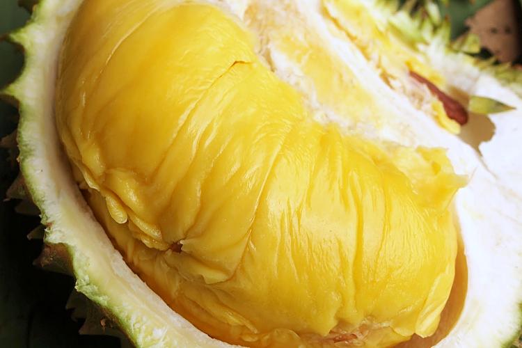 TABLEAPP_Blog #15_5 Best Durian Desserts in KL