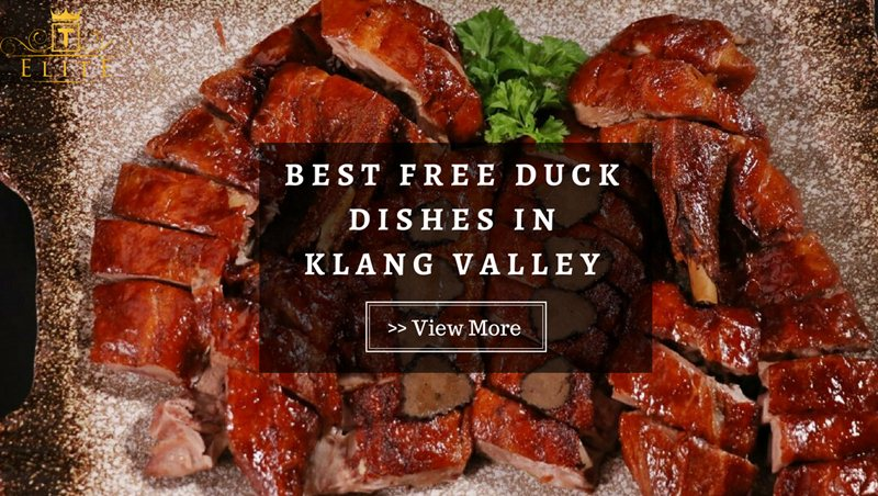 ELITE Review: These Are The Best Duck Dishes In Klang Valley And They Are Free!