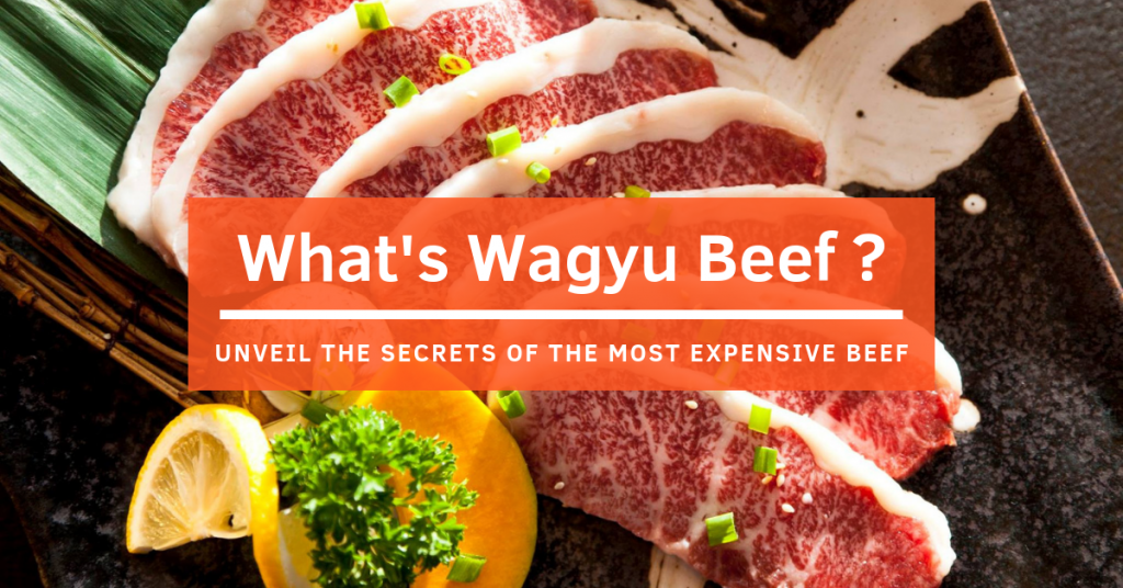 Click to view the Wagyu Beef Blog Banner