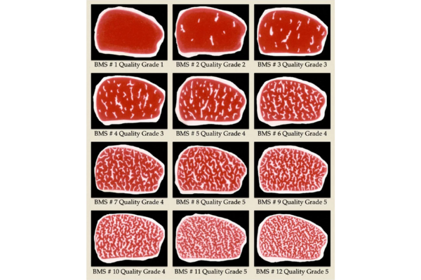 Click to view The Wagyu Meat Grading Chart