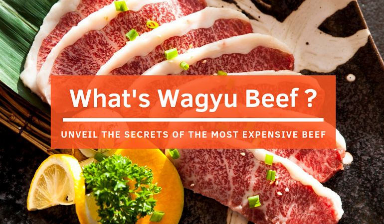 Click here to view the secrets of the most expensive beef in the world!