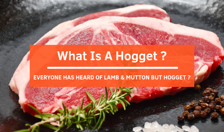 Click to view the Blog Banner - What Is A Hogget