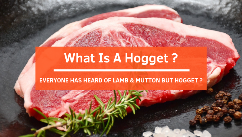 We've Had Lamb And Mutton, What About Hogget?