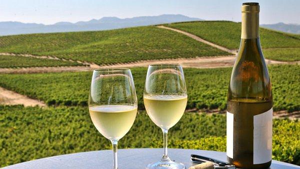 View Chardonnay Wine