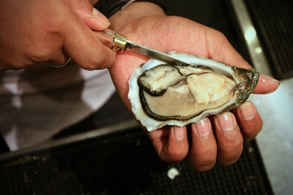 Food Review: ELITE Signature Dishes at Southern Rock Seafood